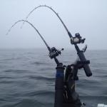 Fiskar på Vättern idag