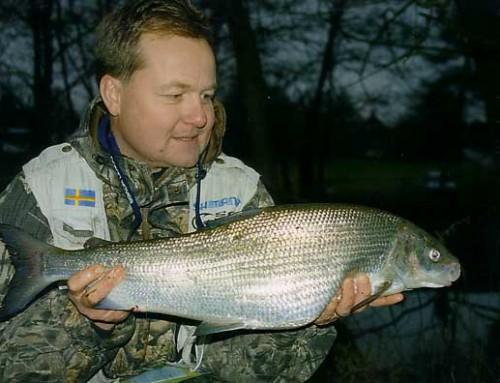 Sikfisket i Skräbeå – dag 2