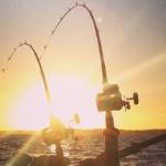 Två dagars fiske utanför Åmål blev en…