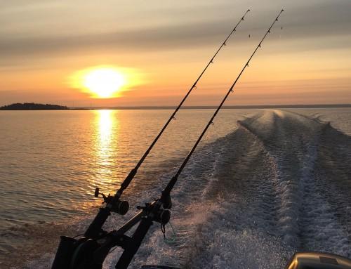 Bra fiske i finvädret