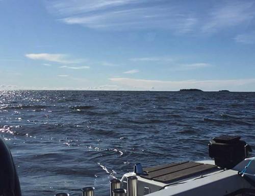 Actionfiske på Vänern – till slut