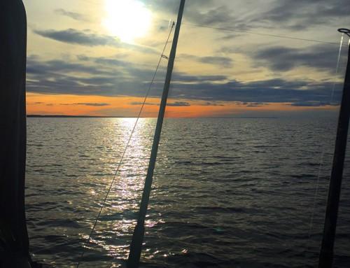 Bra start på vårfisket: regg-öring i håven