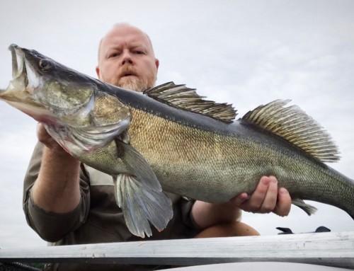 Pelagiskt prickskytte – ett beroendeframkallande fiske