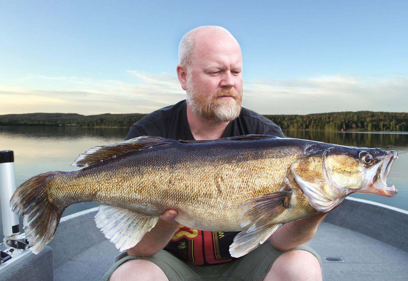 6540 gram och 86 centimeter – en stor fisk för mig. Framförallt i detta vatten...